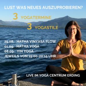 Kursangebot: 3 Yogatermine - 3 Yogastile